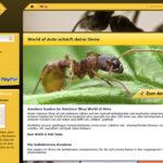 Magento Webseite von World of Ants